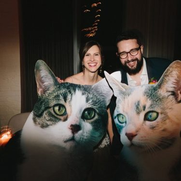 cat-tastic wedding at the dalcy